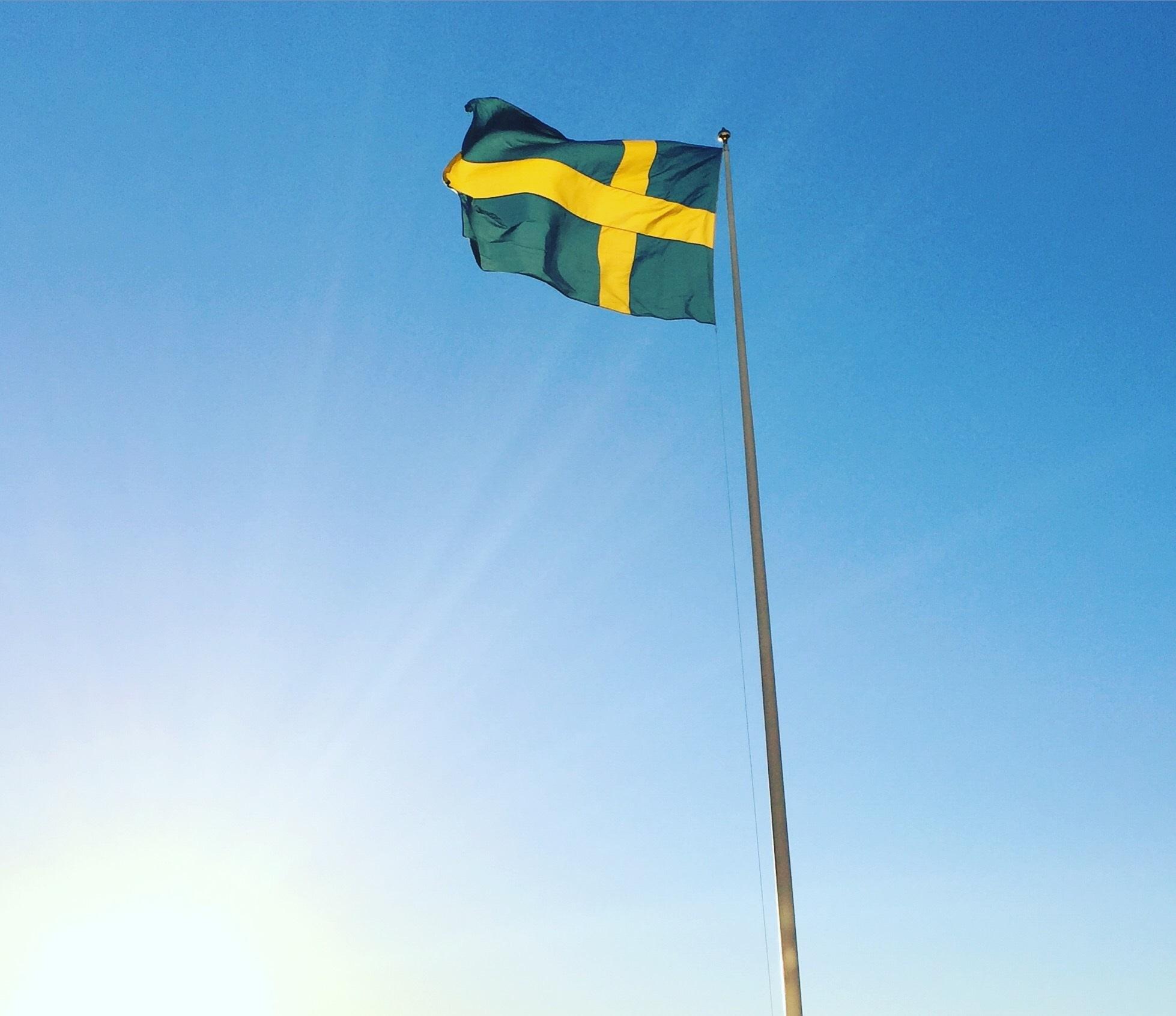 Vill hedra svenska veteraner med flaggdag