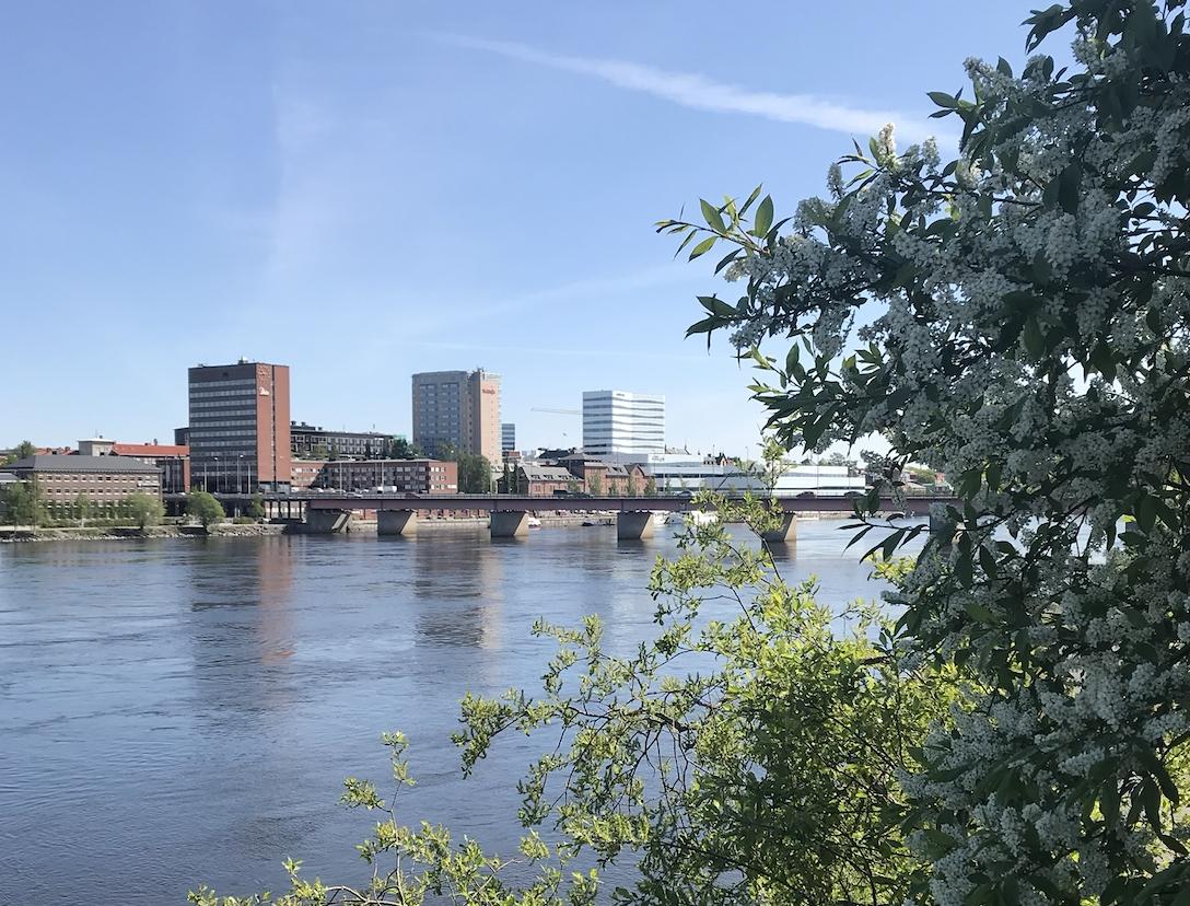 Umeå kommun tar bort avgift för uteserveringar